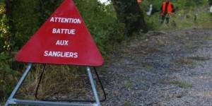 chasse-battue-au-sanglier-saint-bauzille-de-putois-bois-de_521277_510x255