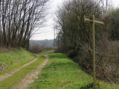 Le chemin des Oignons bientôt réservé aux piétons et cyclistes.